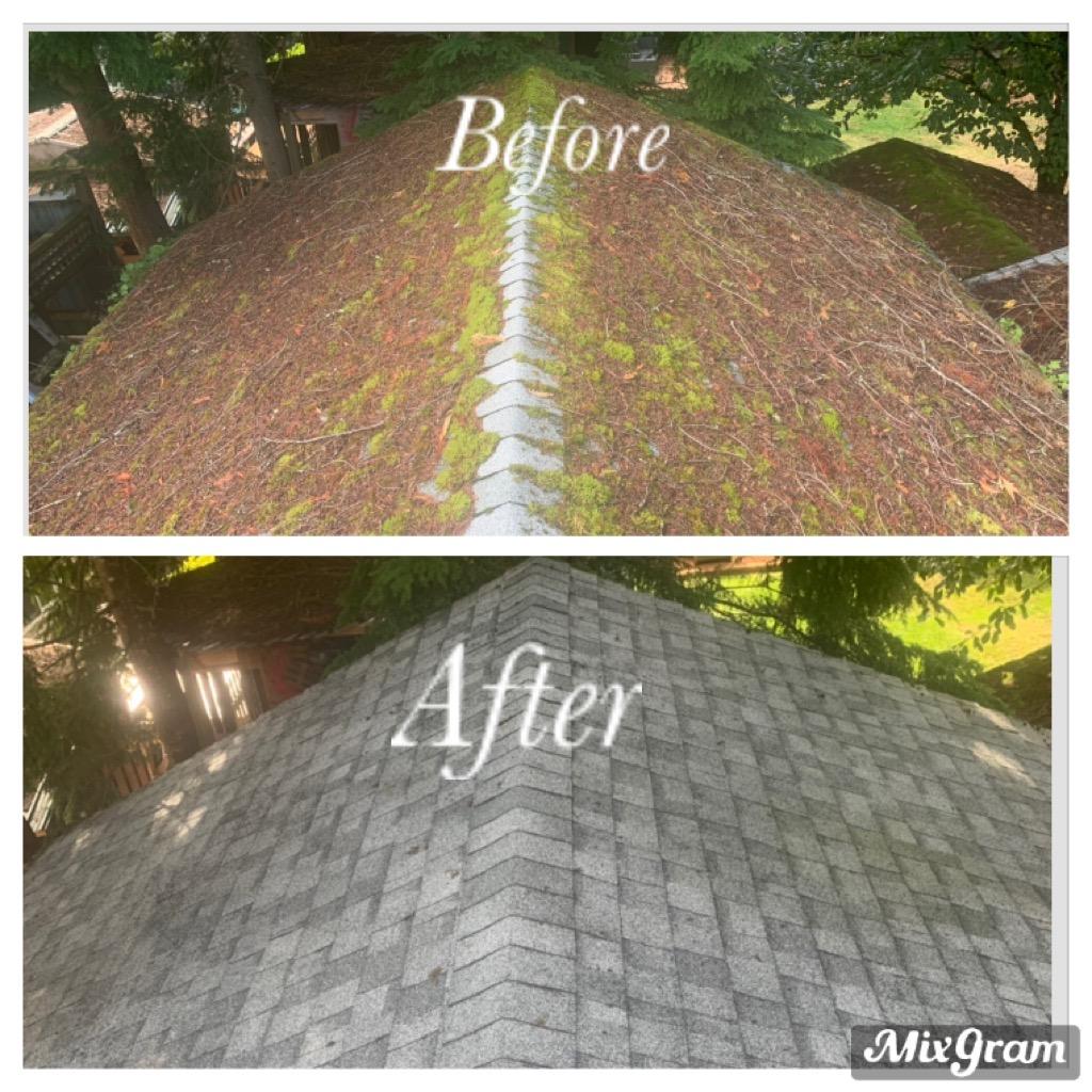 Roof Cleaning Squamish BC