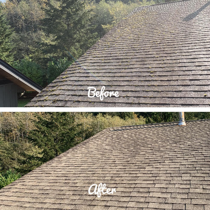 Soft Wash Roof Cleaning Garibaldi Heights BC